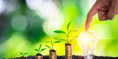 Hand touch light bulb with light and tree growing on stacks on nature background. Saving, accounting and financial concept. technology for saving electric power and energy use ecology idea concept.